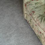  #2810 Stains on carpet