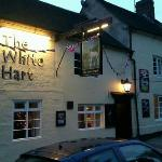 white hart pub and b&b