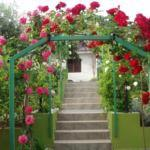 Rosses-Entrance