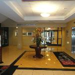Hilton Garden Inn Albany Medical Center resmi