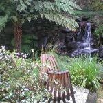 Our fragrant, private garden setting with real waterfall!