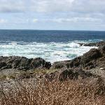 Amphitrite Point, Ucluelet