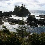  Ucluelet walking trail