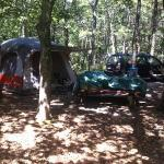 ‪Paine's Campground‬