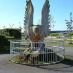 The eagle tree carving outside the Bistro at Rosneath
