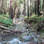 Limekiln State Park