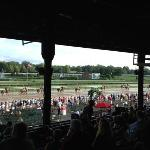  wet day at Saratoga. (bet on the outside horses on muddy tracks)