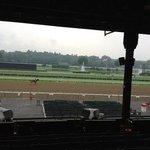warming up at Saratoga.