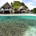 Foto de Misool Eco Resort