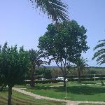 Photo of Apartamentos Son Bou Playa
