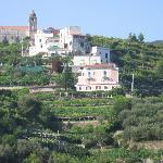  the villa, the houses above it, and the surrounding groves
