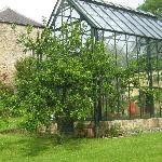 Dovecote & greenhouse