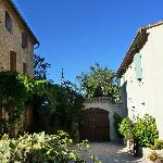 Photo of Une Treille en Provence