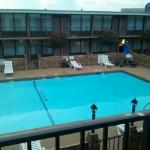 ภาพถ่ายของ BEST WESTERN Greenville Airport Inn