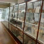 Glass cases full of Egyptian stuff: the Petrie Museum
