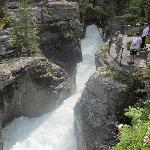  Maligne Falls