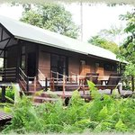 Mulu World Heritage Area Accommodation