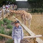 Our Son Charlie at Cotswold Wildlife Park
