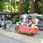 Santa Cruz Redwoods RV Resort의 사진