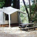  Tent pavilions available on river and tent area.