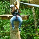  During Zipline