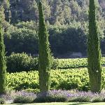La Bastide de Marie-The essence of Provence