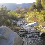 One of the mountain creeks surrounding the hotel