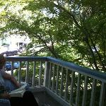 reading on the terrace, amongst the trees