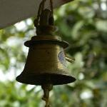 Bell to call the owners for any service