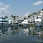 Pensacola Beach Marina & Charters