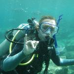Hang loose, Deep Ecology makes diving fun!