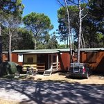 Photo de Camping Residence Il Tridente