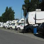 Foto de Golden Nugget RV Park