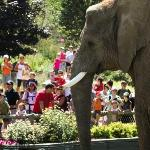 Granby Zoo (Zoo de Granby)