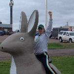 Got to love a giant rabbit!