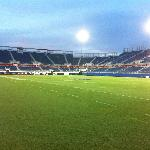 FAU Stadium