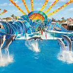Sea World is one of our top attraction on our sightseeing tours