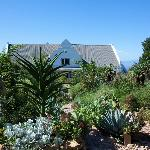 Country House set in fynbos
