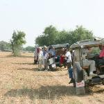 Village Safari Day Tours