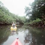 Kayaking on the river/canal