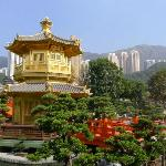 Nan Lian Gardens in Diamond Hill (2)