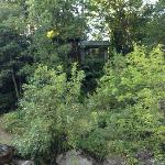 View of Maple Cabin from river. Like a tree house above the river!