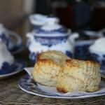 Audrey's scrumptious scones of perfection