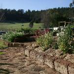 Foto de Balingup Rose Bed and Breakfast