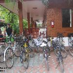 Bikes available for guests use