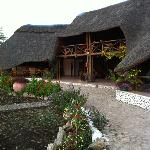 Manyara Wildlife Safari Camp Foto