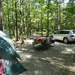 Campsite shows picnic table and other site