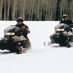  Snowmobilers