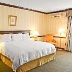 Tn Executive Single Room King