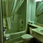 Large bathroom with usual amenities